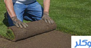 شركة تركيب وتوريد العشب الطبيعي بمكة