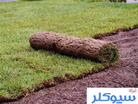 شركة تركيب وتوريد العشب الطبيعي بالرياض