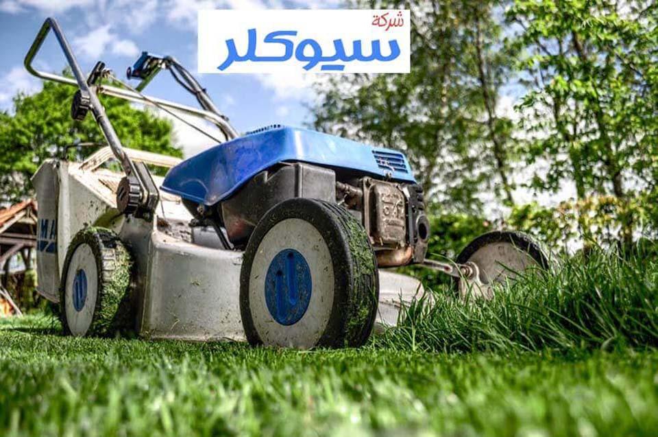شركة تنسيق حدائق بالباحه