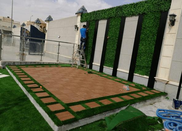 عشب جداري بخميس مشيط