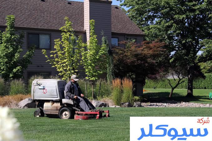 شركة تنظيم حدائق بالدمام