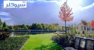 شركة تنظيم حدائق بخميس مشيط