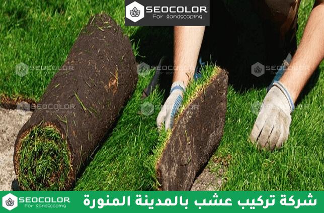 شركة تركيب عشب بالمدينة المنورة